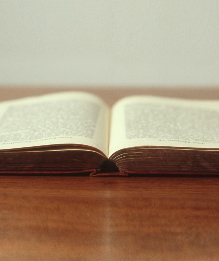 Author Reading Series