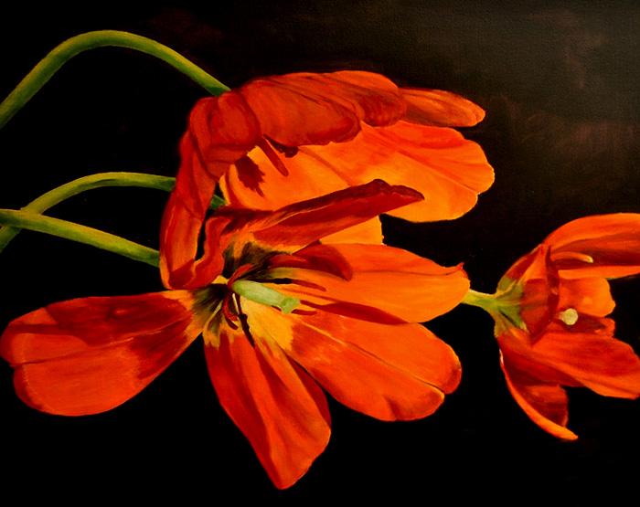 Jennifer Goodwin – Floral Dialogues
